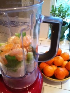 Beginner smoothie in blender