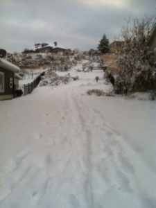 Winter fun...a walking path near my house